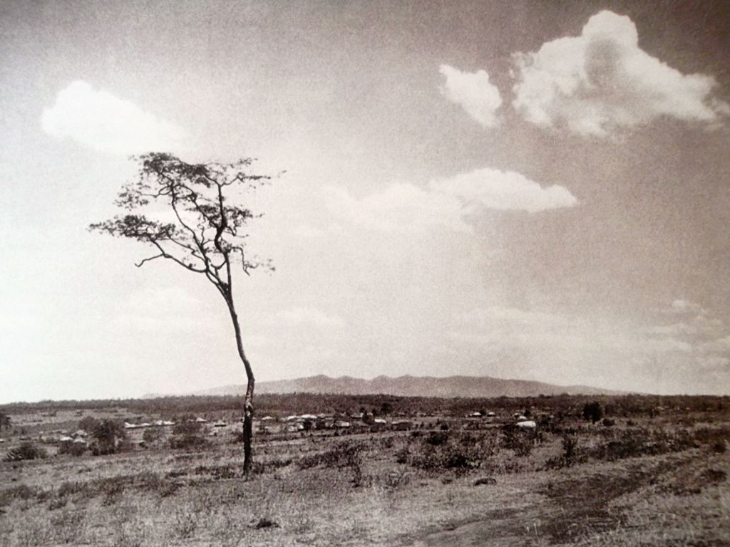 the n bazaar in nairobi pictured around the late s in the ngong hills from nairobi in the early 1900primes