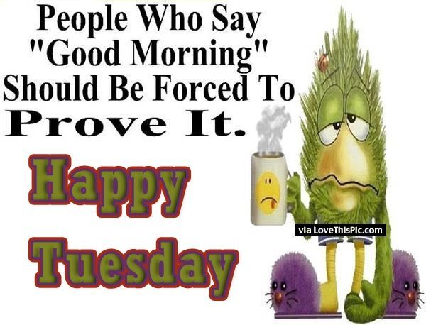 Good Morning Funny Quotes: Funny Good Morning Quote For Tuesday