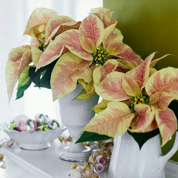 Beautiful Wedding Centerpiece Ideas Christmas Flower Arrangements Christmas Floral Arrangements Christmas Flowers