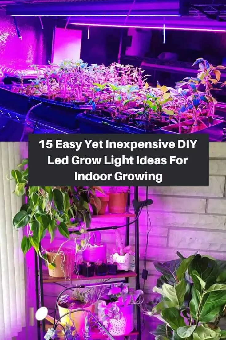 15 Easy DIY Grow Light Ideas For Year Round Indoor Gardening And Seed Starting diy