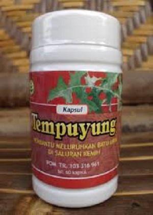 TEMPUYUNG KAPSUL  Komposisi: Tiap kapsul mengandung ekstrak yang setara dengan 2 gram simplisia Sonchus Arvensis Folium.  Khasiat: Membantu melancarkan buang air kecil dan membantu meluruhkan batu urin di saluran kemih  Aturan Pakai: Diminum 2 x 2 per hari  ISI : 60 Kapsul   Diproduksi oleh : UD RACHMA SARI - Sukoharjo  Didistribusikan oleh : UD TAZAKKA - Sukoharjo