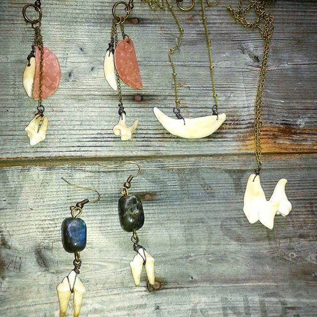 Teeth earrings and necklaces from coyote, raccoon, and opposum. Catfish Caravan does not support trophy hunting, factory farming, or other forms of animal cruelty. All bones, leather, or animal products are either found by me or bought/traded with other scavengers or sustanance hunters. Feel free to enquire about setting up custom etsy orders, I don't always have time to list everything before it sells at markets but I usually post pictures first. All these peices would be in the $25-35…