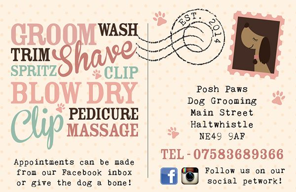Posh Paws Dog Grooming Salon Is A Lovely Friendly Clean And Modern Fresh New Salon Situated In North Dog Grooming Salons Grooming Salon Pet Grooming Business