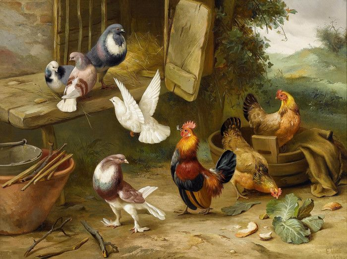 Chickens Dove And Pigeons In A Farmyard By Edgar Hunt Art Posters Art Art Painting Oil Chicken Art