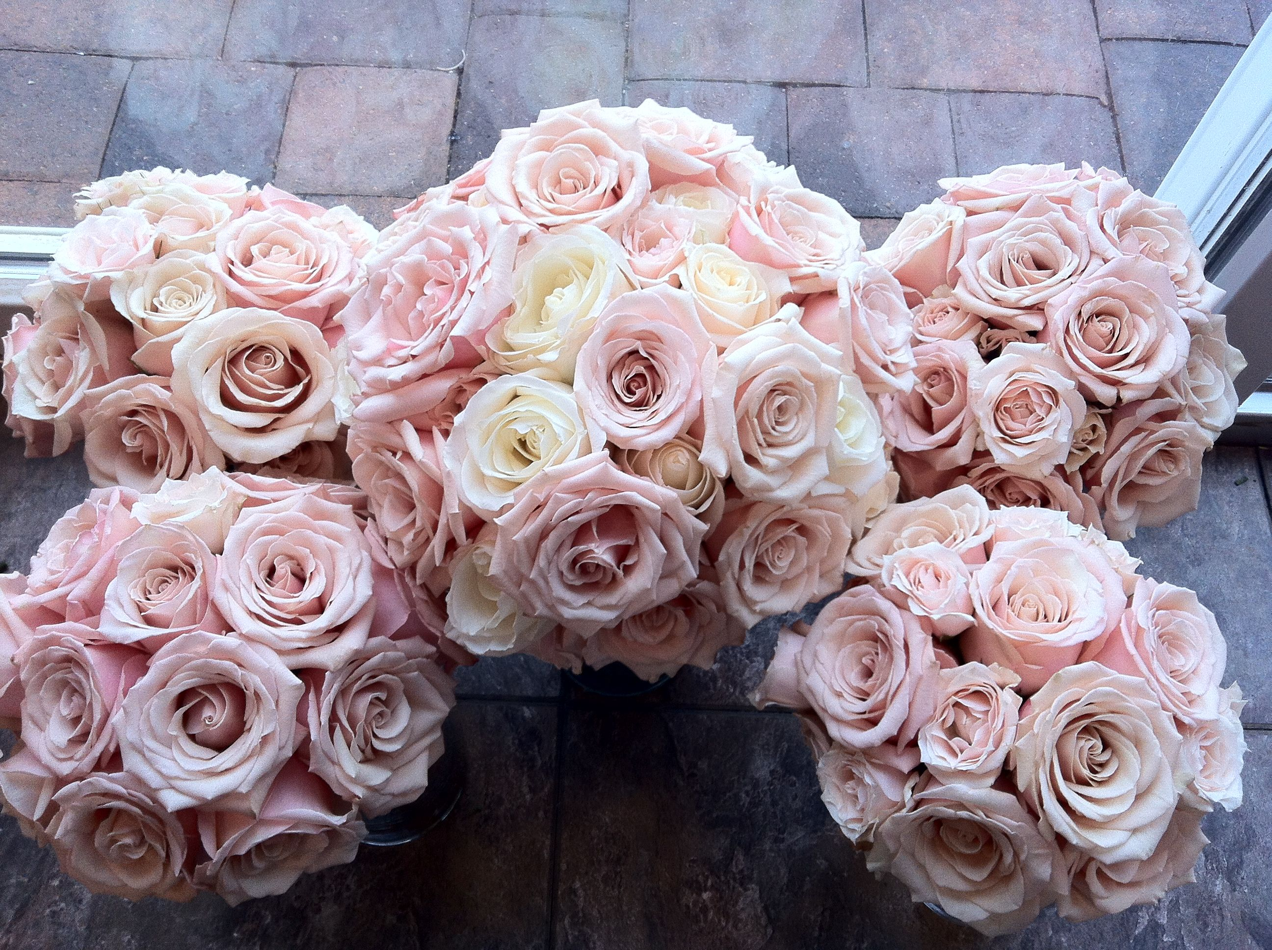 Blush Pink Roses All Pink Bouquets Blush Pink Wedding Pink And