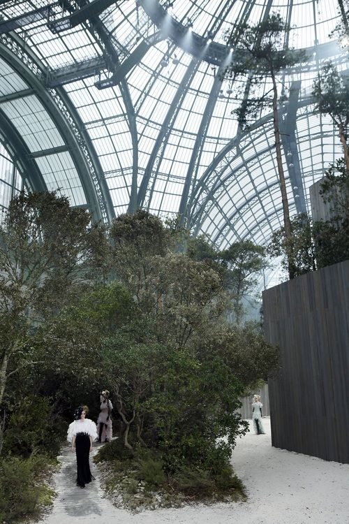 An enchanted inside forest at Chanel show inside the Grand Palais.  Source: gettyimages.com