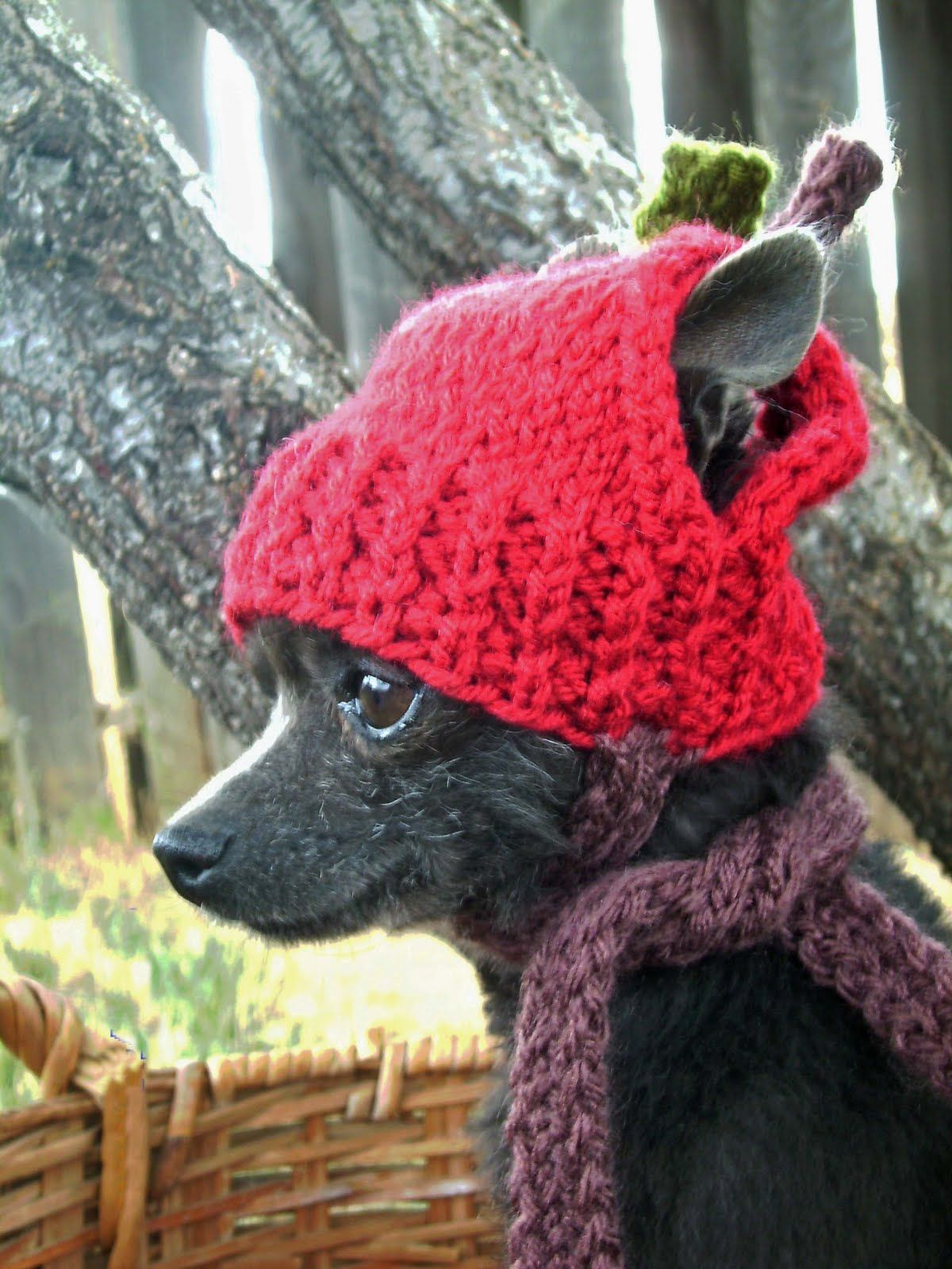 Dog Gone it: Anywear hand knits for dogs | Crochet dog hat ...
