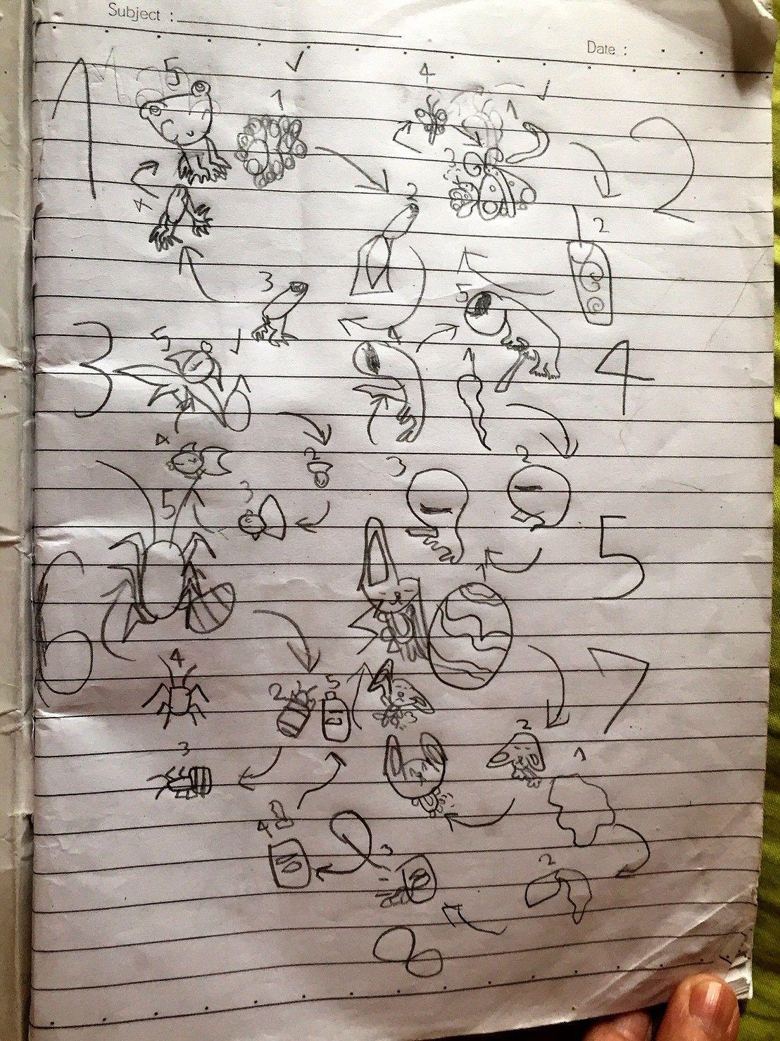 วงจรสิ่งมีชีวิต เขียนจากความคิดของพี่หนู พลอยฟ้า หกขวบ 28 / 01 / 18