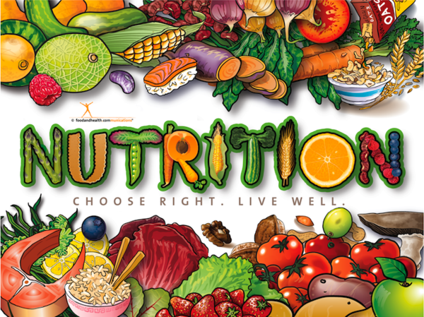 Nutrition Guidelines: Getting Started - Diet and Nutrition Center -  EverydayHealth.com