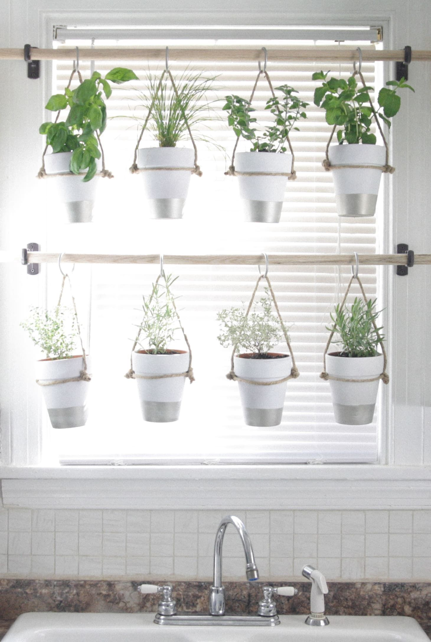 14 Ways To Grow Indoor Herbs Right In Your Kitchen With Images