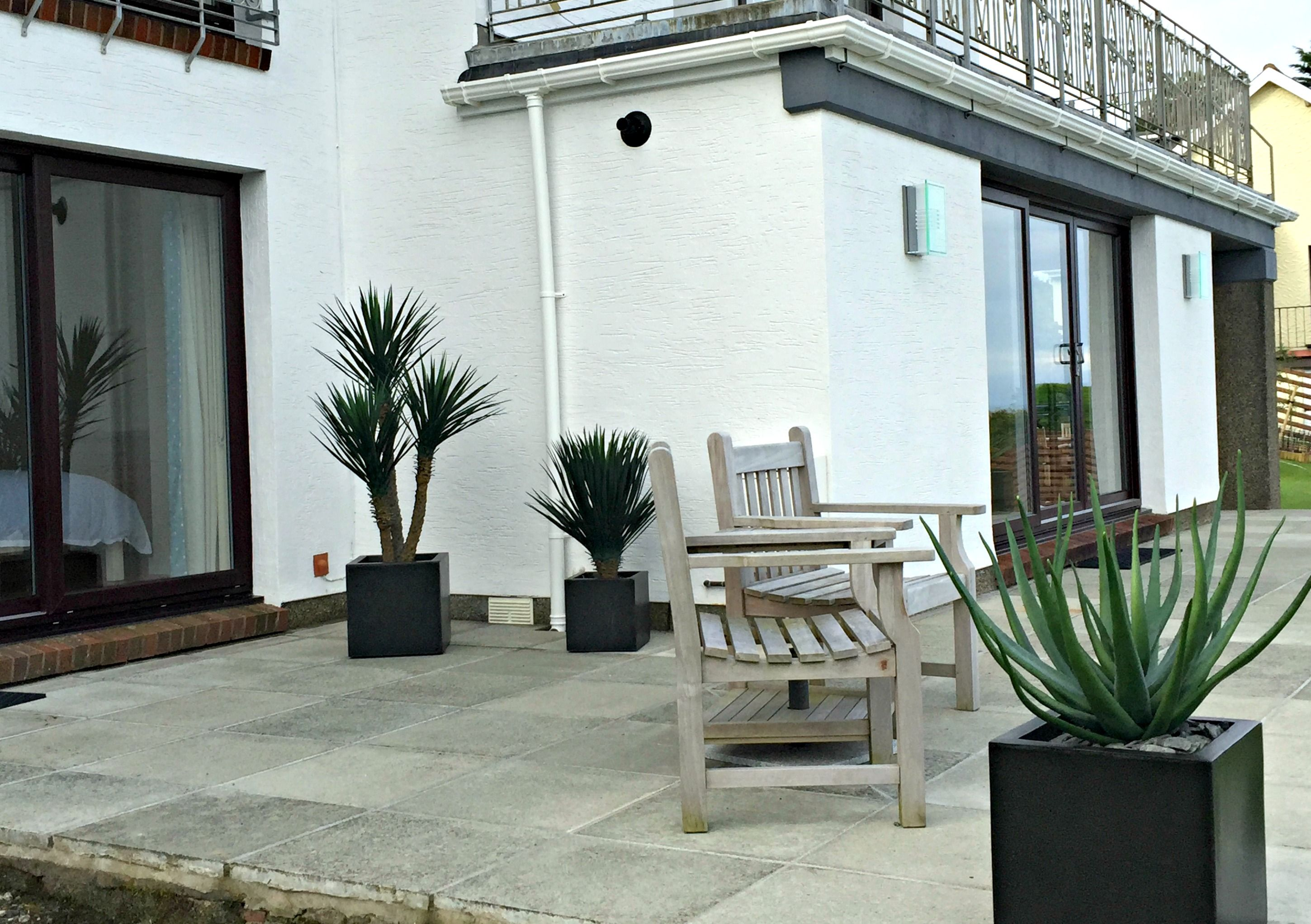 A Patio, Showing Artificial Aloe Vera, And Fake Yucca Plants.
