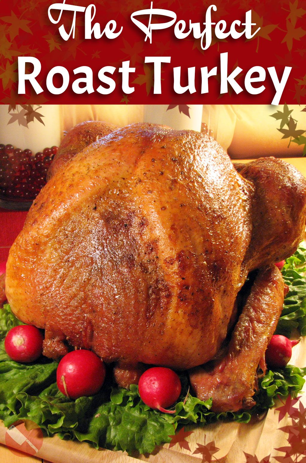 Photo of The Complete Foolproof Guide to Roasting a Holiday Turkey