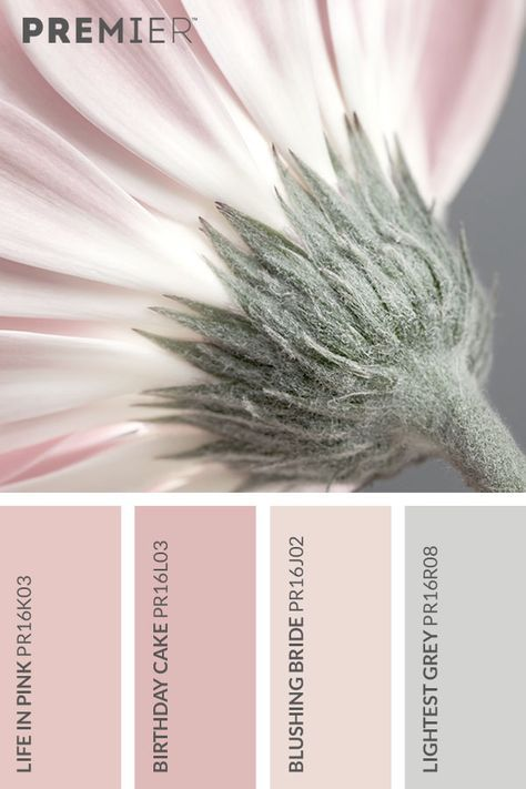 Pin By Rita Mead On Color Chart In 2018 Pinterest Color Color