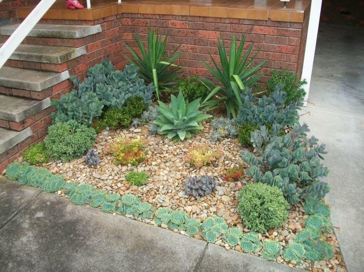 petit jardin décoré de galets et  plantes succulentes