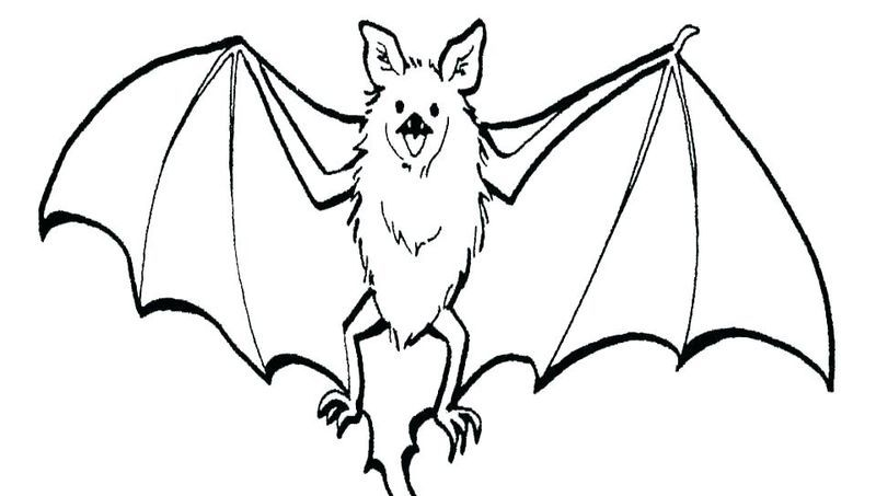 Bat Coloring Pages For Your Kids Bat Coloring Pages Animal