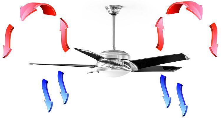 Ceiling Fan Rotation Summer Vs Winter Ceiling Fan Fan
