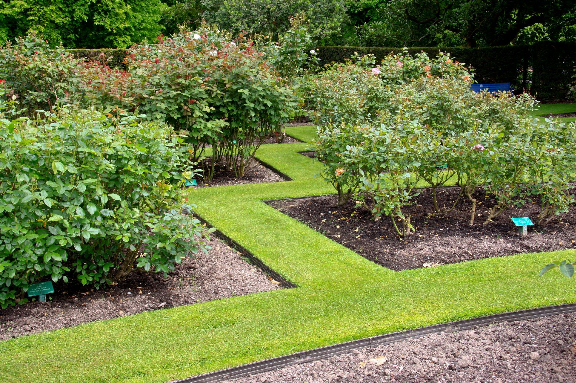 Rite Edge Aluminium Garden Edging In The Rose Gardens Wwwterrascapeco
