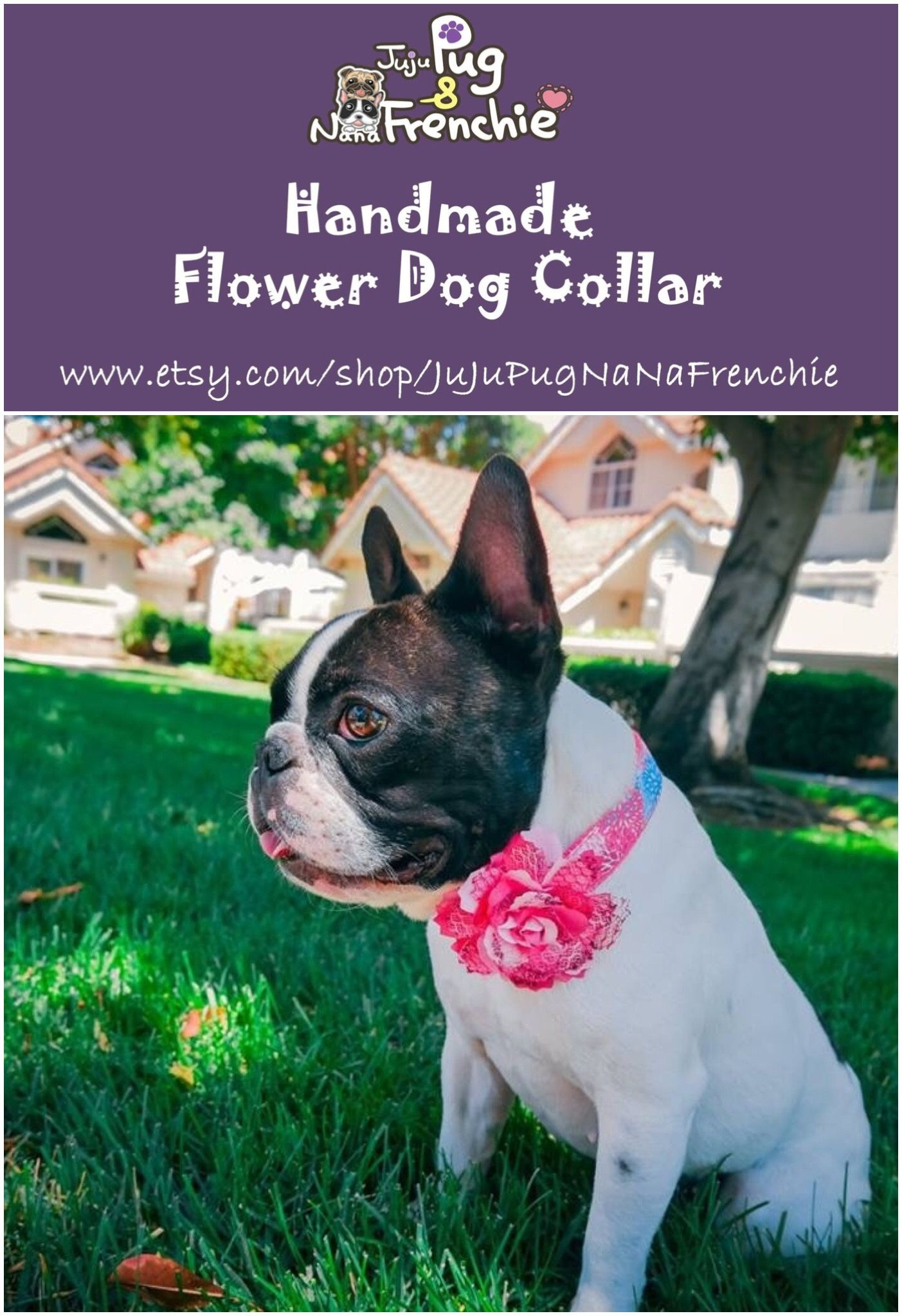 Pink Floral Dog Collar Girl Flower Collar Dogcollar Dogflower