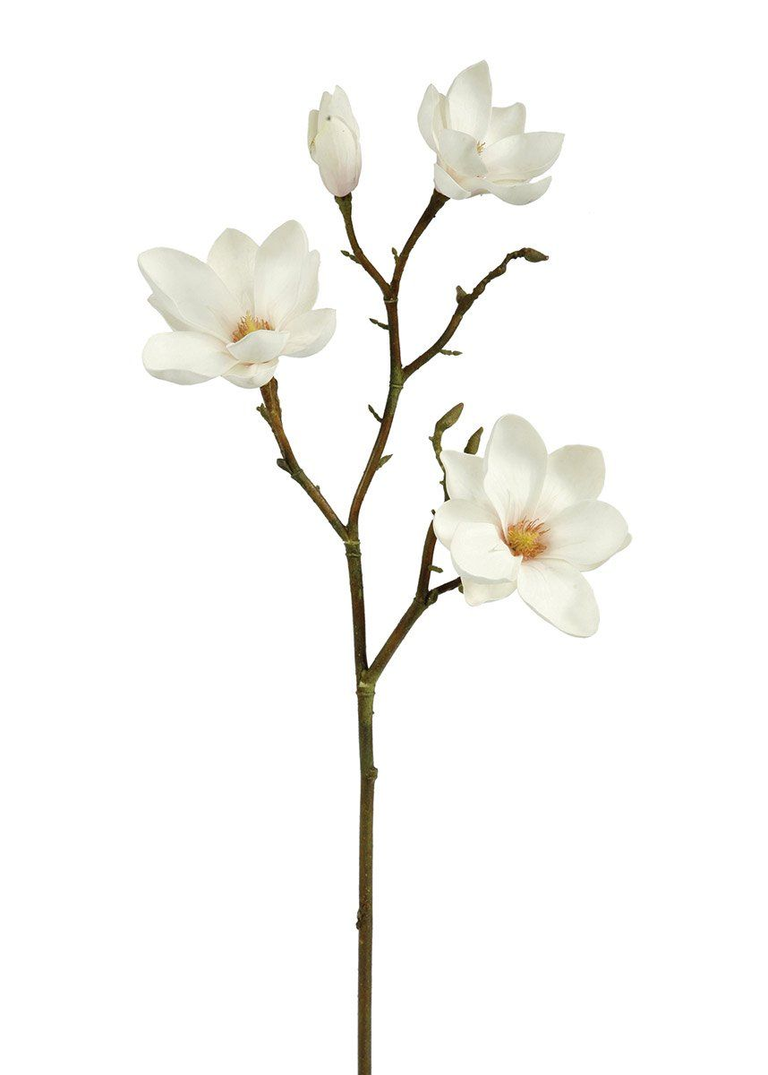 Cream Fake Magnolia Floral Branch In 2020 Floral Branch Long Stem Flowers Beautiful Flowers Garden