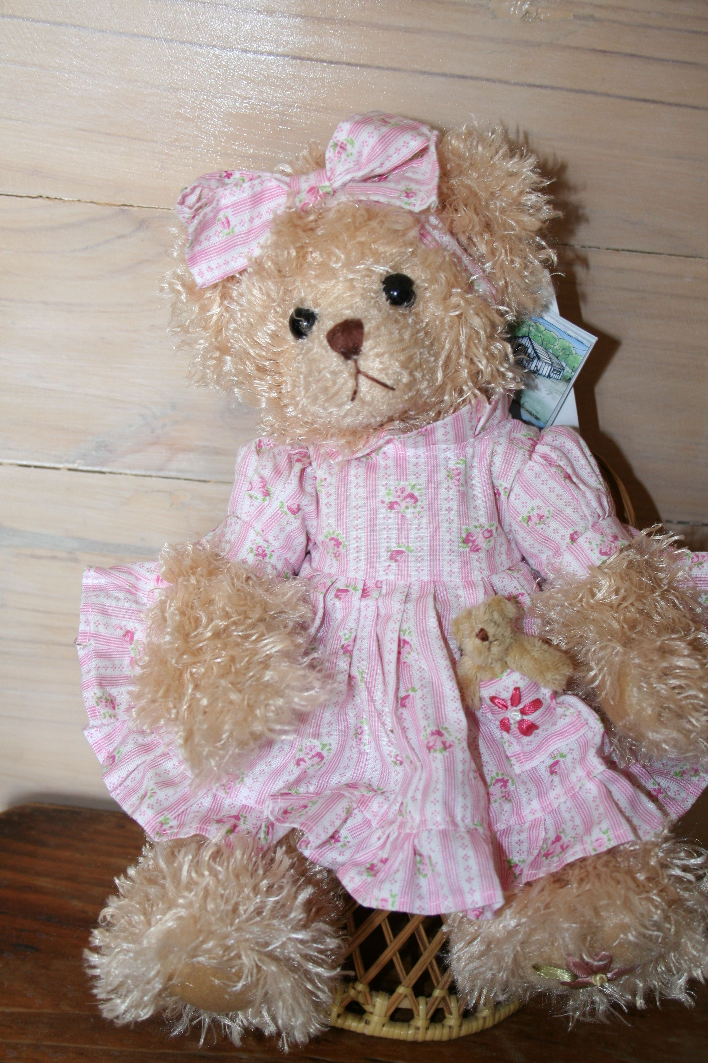 Baby Shops Helensvale Daisy From The Helensvale Collection Of Settler Bears Price Aud