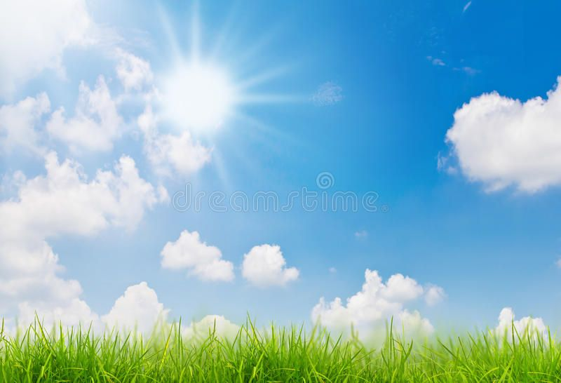 Spring Nature Background With Grass And Blue Sky Sunny Day Ad Background Grass Spring Nature Sunny Ad Nature Backgrounds Spring Nature Sky