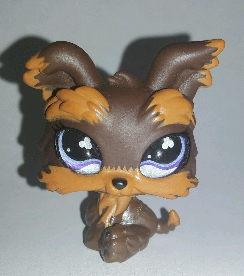 Littlest Pet Shop Brown Yorkie Dog Glass Eyes 509 Preowned Lps In