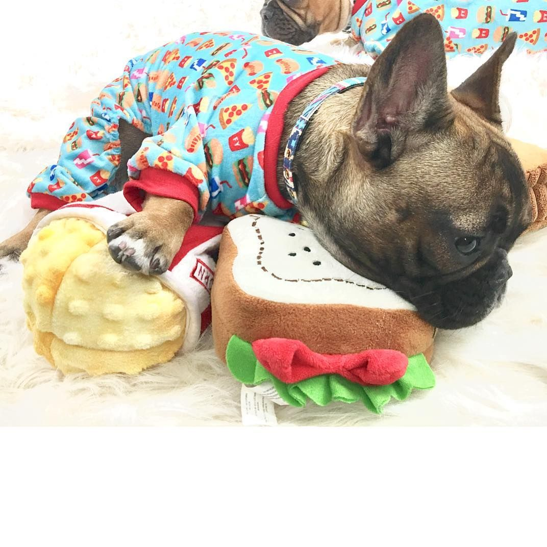 Just A Little Snack Before Bedtime Cool Pets Cute Animals French Bulldog