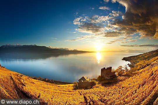 13106 Photo Suisse Canton De Vaud Tour De Marsens