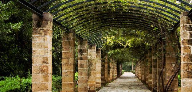 Pergolas, Modern, Beauty, Practical, Backyard, Walkway, Gardens   Athens,