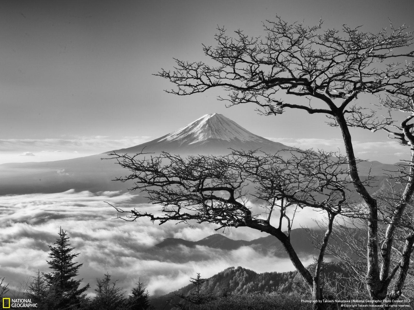 Fotografie belle in bianco e nero foto emozioni in for Disegni bianco e nero paesaggi