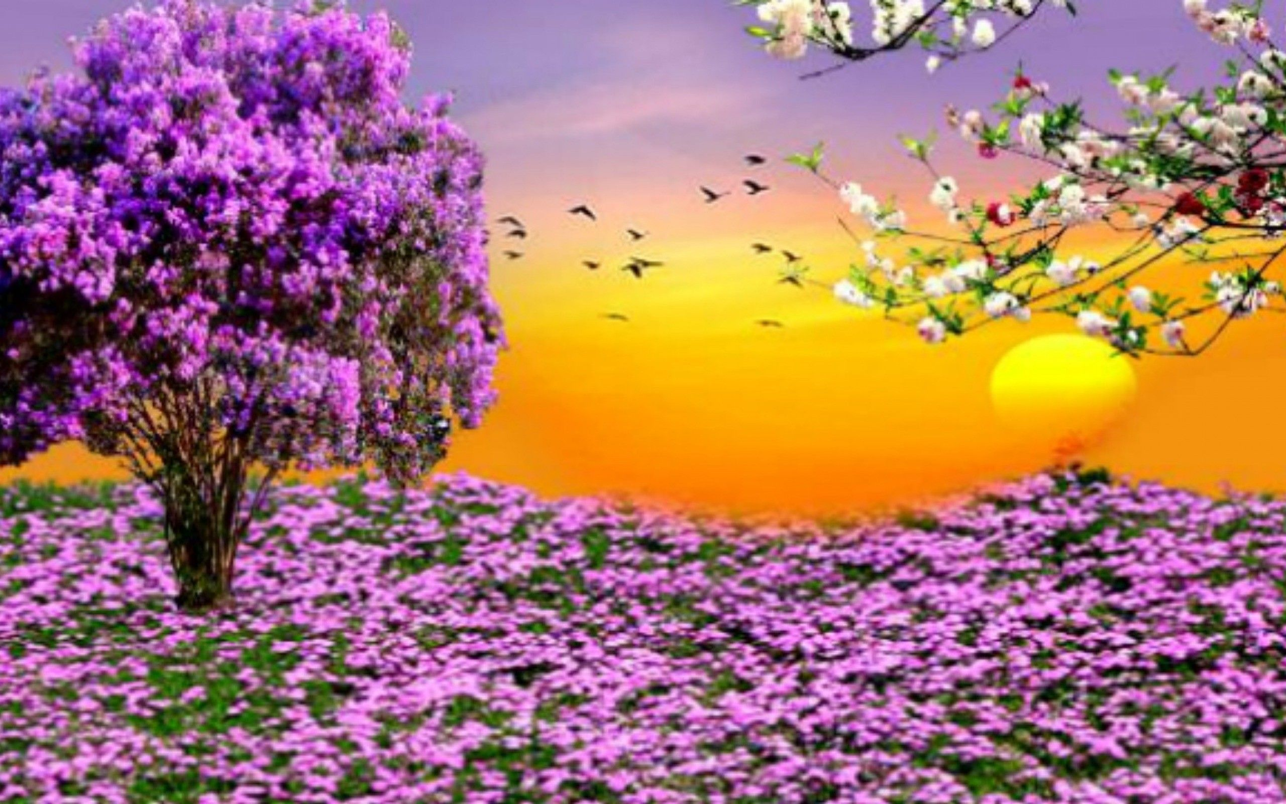 Spring Flowers Download Yahoo Image Search Results Spring Desktop Wallpaper Spring Landscape Photos Spring Wallpaper
