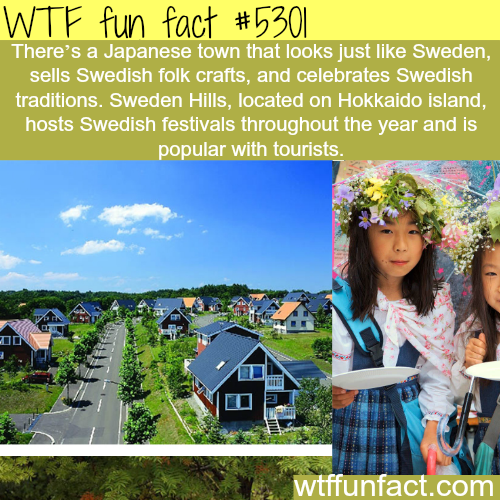 amusing facts about sweden Stockholm fun and quirky facts  if you consider that stockholm is not even halfway up the length of sweden you can maybe picture the situation further north.