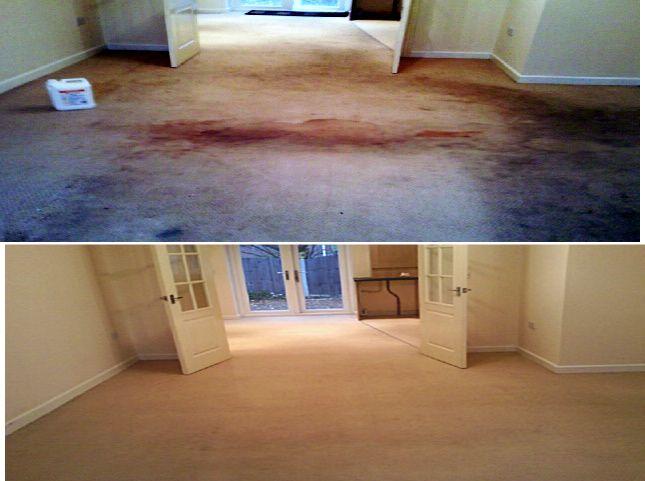 How To Clean Your Own Carpets How To Clean Carpet Steam Clean Carpet Carpet