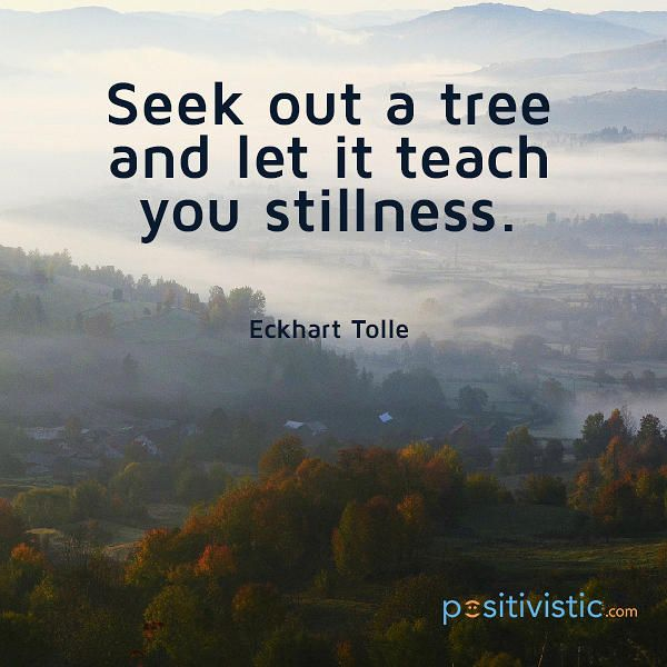 Image result for eckhart tolle patience