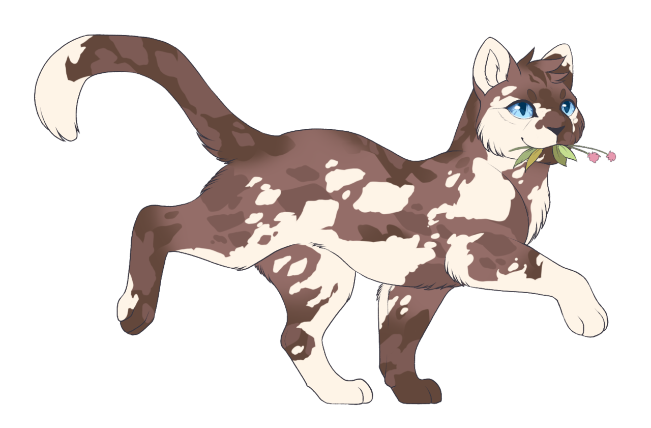 041. Puddleshine Warrior cats