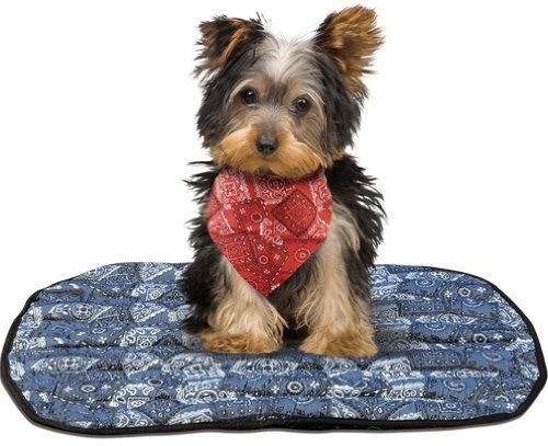 Miracool Mat 24x20in Blu Learn More By Visiting The Image Link This Is An Amazon Affiliate Link Cool Dog Beds