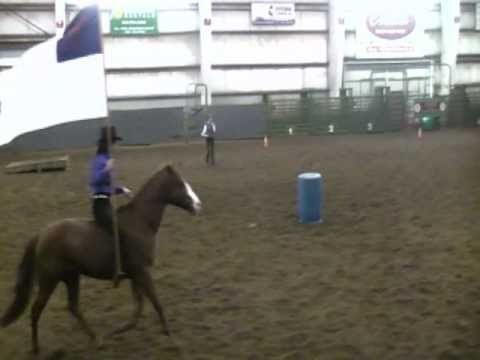Bareback and Bridleless - Wind Rider Challenge Champions- Albany NW Hors...