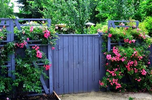 Amazing-diy-pallet-fence-designs-ideas.jpg (500×330)