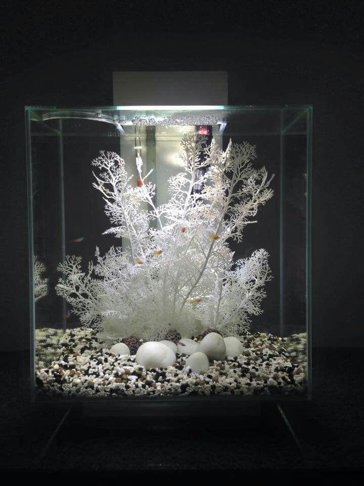 Home aquarium ideas the aquarium buyers guide fluval edge for Fish tank ice method