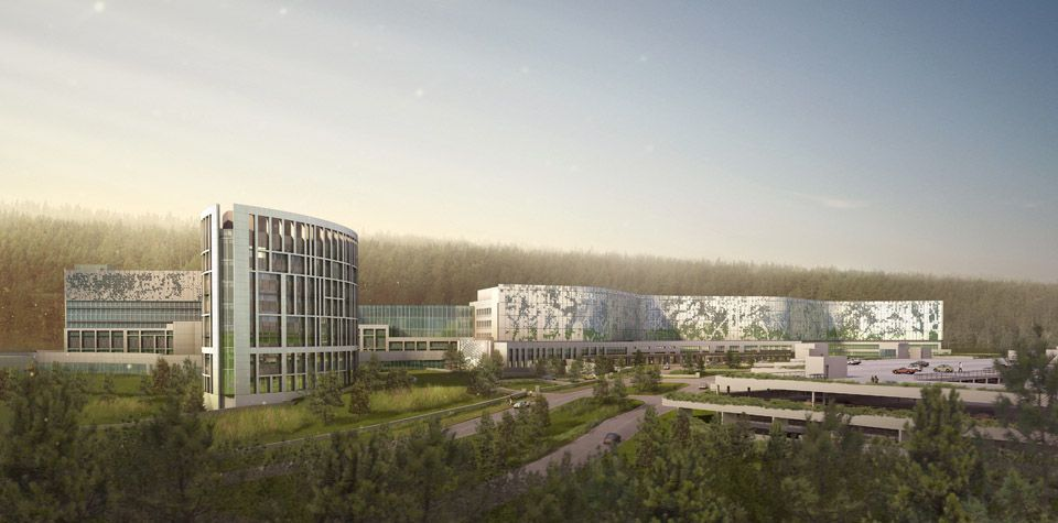 Hok is designing a sustainable healing environment that