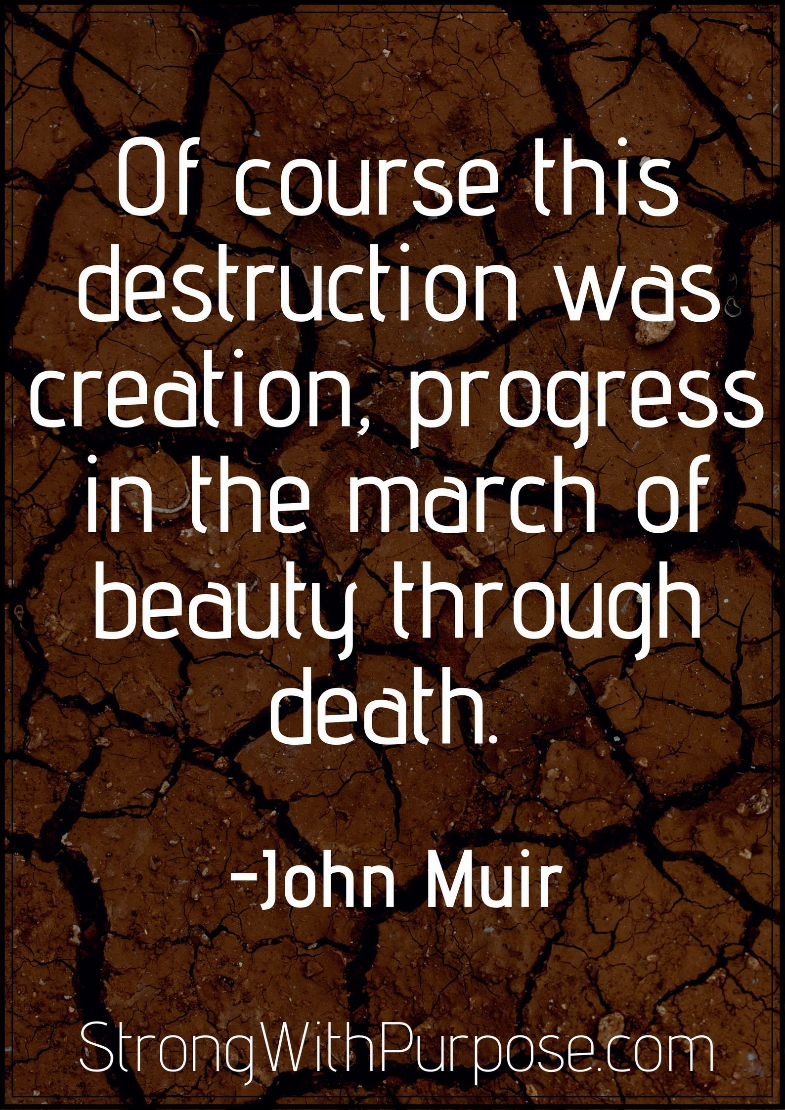 5 John Muir Quotes About Nature To Ignite Your Wild Spirit Quotes
