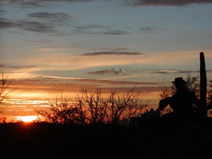 Organ Pipe Cactus National Monument Southern Arizona