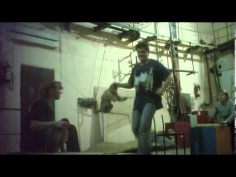 Unfassbar grausam: Neues Zirkus-Video zeigt die systembedingte Tierquälerei