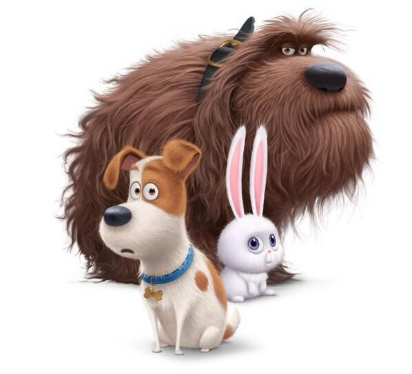 First Look At Illumination Entertainments Upcoming Untitled Pet