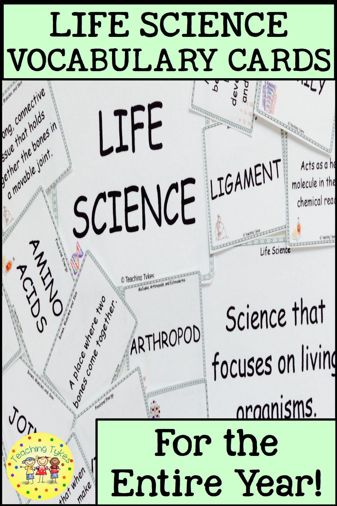 Life Science Vocabulary Cards S