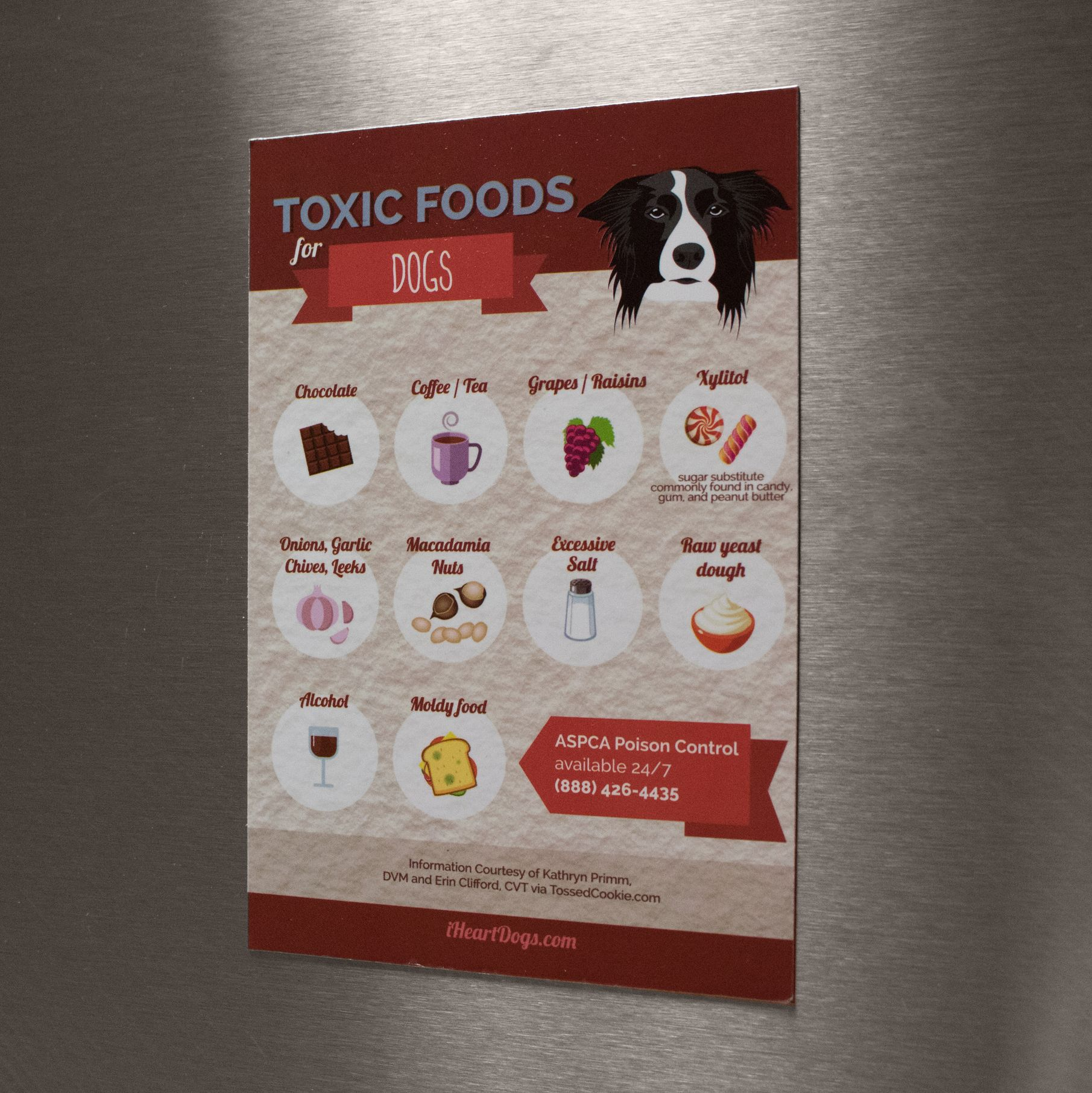 Toxic Dog Foods Refrigerator Magnet Toxic Foods For Dogs Dog
