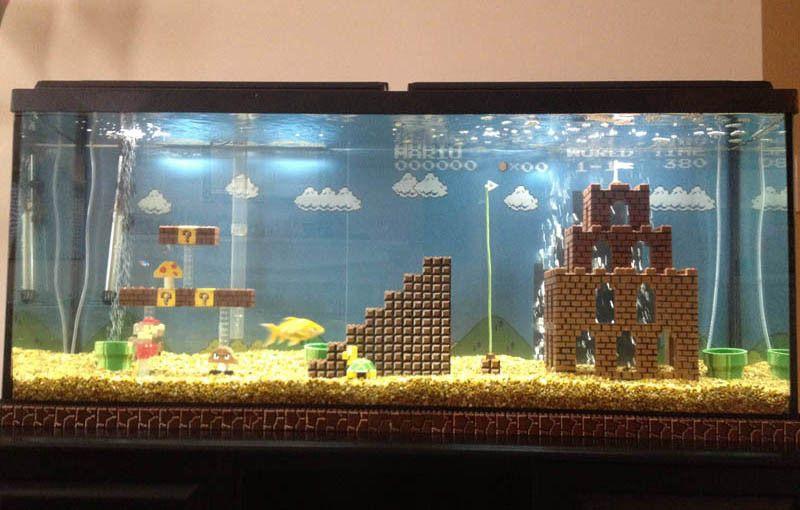 This Super Mario Fish Tank Is Awesome Fish Tank Themes Cool Fish Tanks Small Fish Tanks
