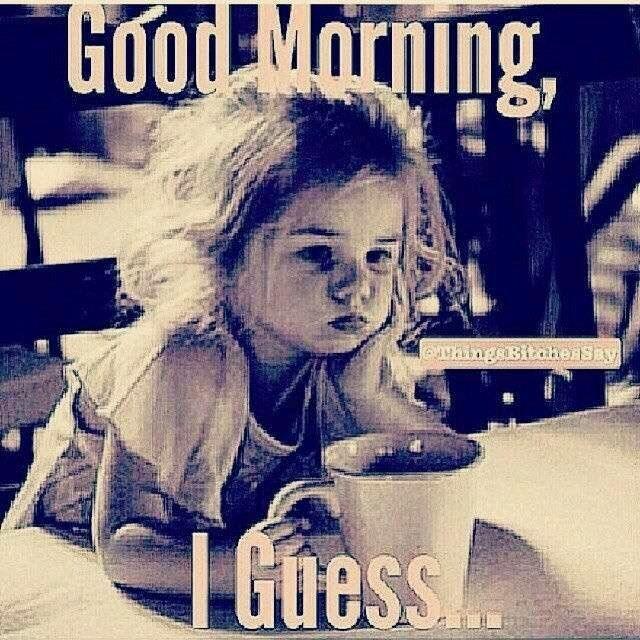 Pin By Tammy Arsenault On Lol Good Morning Funny Pictures Funny Good Morning Memes Good Morning Meme