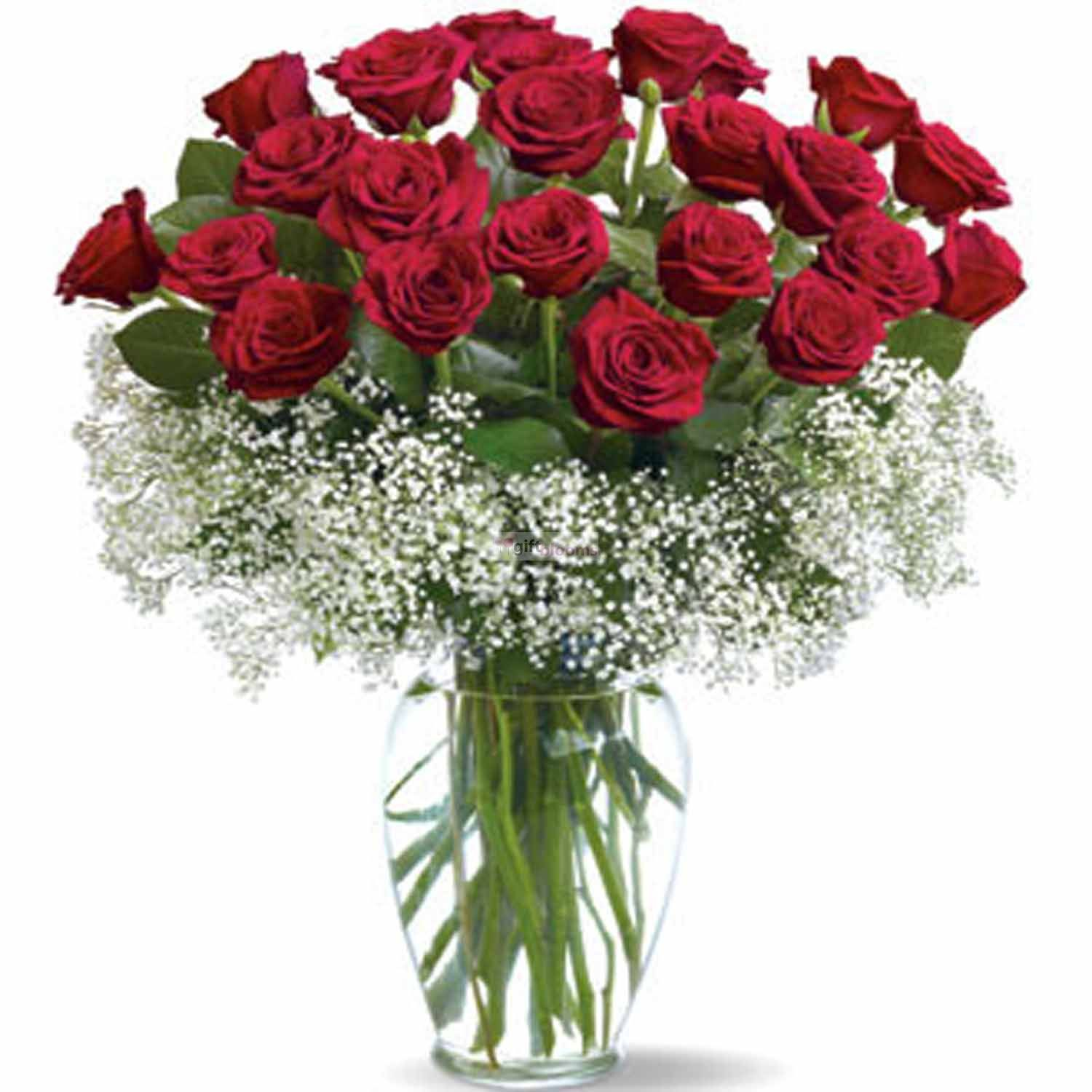 Send 24 Red Roses Vase To Your Love On This