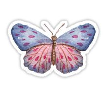 butterfly Pegatina